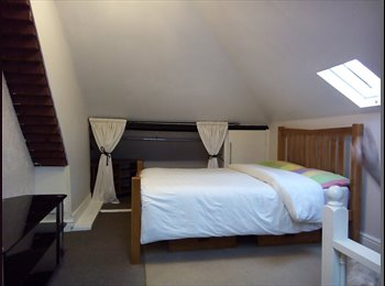 KING SIZE ROOM FOR ONE SINGLE PROFFESIONAL 170 £ PW