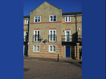 EasyRoommate UK - Large en suite room, sunny & un-overlooked, walk to station - Chelmsford, Chelmsford - £600 pcm
