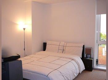 Double Bedroom in Posh flat