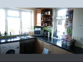 EasyRoommate UK - Sunny double room for couple or single in Walthamstow - Walthamstow, London - £700 pcm