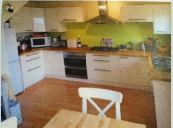 EasyRoommate UK - 5 BED STUDENT HOUSE-REDUCED!  - Bath, Bath and NE Somerset - £370 pcm