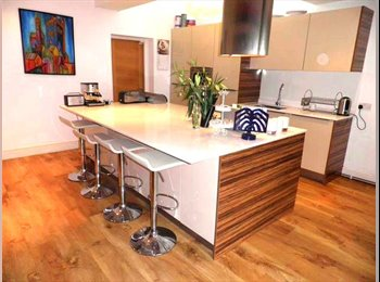 EasyRoommate UK - *****The Best Town in Birmingham!***** - Wylde Green, Birmingham - £475 pcm