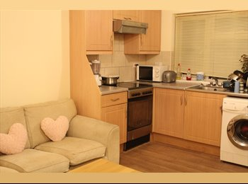 EasyRoommate UK - one double bedroom available from 1st March 16 - Hounslow, London - £475 pcm