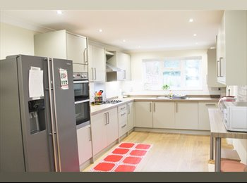 lovely 5 bedroom house on Plumsead common