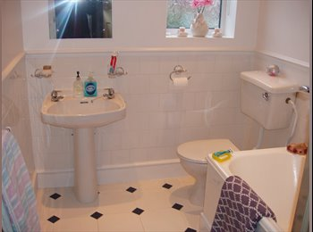 EasyRoommate UK - rooms to let in Heaton - High Heaton, Newcastle upon Tyne - £350 pcm