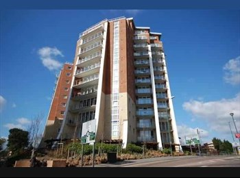 EasyRoommate UK - DOUBLE ROOM IN LARGE LUXORY FLAT FOR MARCH  - West Cliff, Bournemouth - £500 pcm