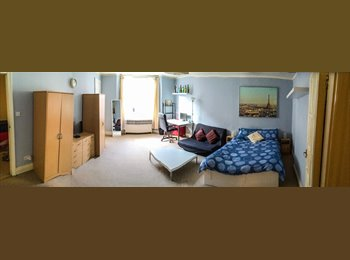 BIG lovely Double Room in Queensway - Bayswater (Zone 1)