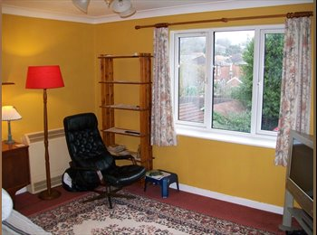Two rooms in comfortable flatshare