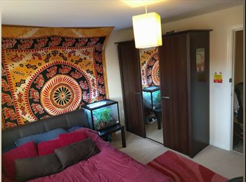 EasyRoommate UK - Double room with en-suite bathroom. Bills included! - Horfield, Bristol - £425 pcm