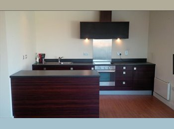 2 Bedroom Luxury Apartment - 1 Bedroom Available