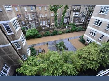 EasyRoommate UK - Double Bedroom - Earl's Court  - Earls Court, London - £850 pcm
