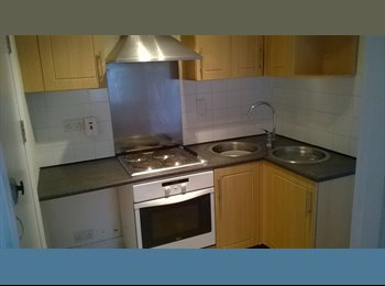 EasyRoommate UK - ST AUSTELL, Cornwall,  Large studio flat, seperate kitchen  - Plymouth, Plymouth - £425 pcm