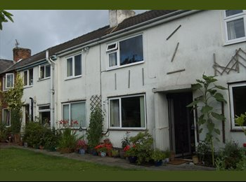 EasyRoommate UK - Comfortable Room in Rural Wales - Llansantffraid, Aberystwyth - £375 pcm