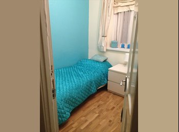 Single in modern friendly family home
