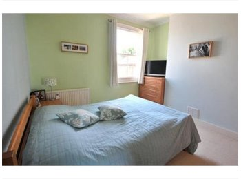 EasyRoommate UK - Bright double room in spacious North London flat - Alexandra Palace, London - £675 pcm