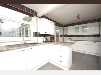 EasyRoommate UK - Large 6 bed house, single room available - Canterbury, Canterbury - £365 pcm