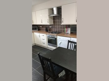 EasyRoommate UK - Duncan Road, Shrub End, Colcheter. Newly Refurbished House. Two Single Rooms Available. - Shrub End, Colchester - £368 pcm