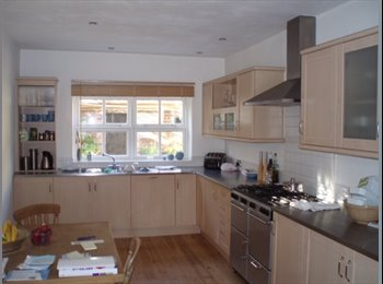EasyRoommate UK - Double Room, Central. Athelstan Rd £420 pcm,Non-Smoking Female Pref, Exeter - £420 pcm