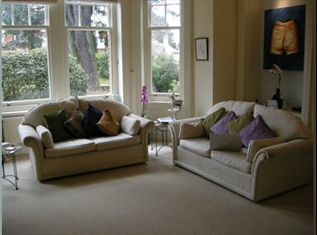 Good size double room in Edwardian flat with original...