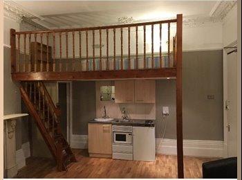 Bright, spacious double studio with mezzanine bedroom - W14