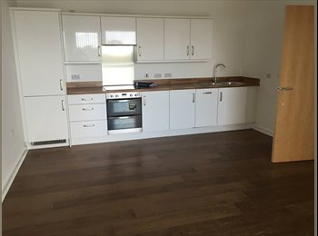 EasyRoommate UK - Amazing brand new flat to share  - Seven Sisters, London - £780 pcm