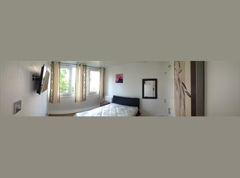 Single and Double rooms to let