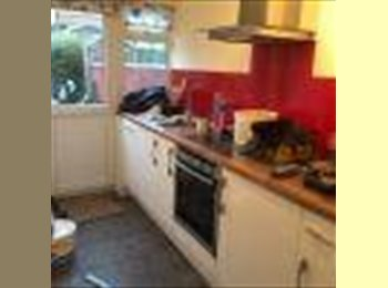 Very cheap single room in a huge house £130 pw