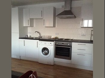 EasyRoommate UK - Female flatmate  wanted for Penthouse apartment (City Centre) - Dundee, Dundee - £375 pcm