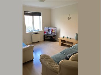 EasyRoommate UK - Double Room £390 inc bills in Cardiff Bay - Cardiff Bay, Cardiff - £390 pcm