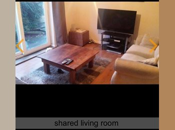 EasyRoommate UK - Double room available - Luton, Luton - £450 pcm