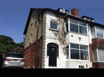 EasyRoommate UK - The Legendary Bat House - Headingley, Leeds - £368 pcm