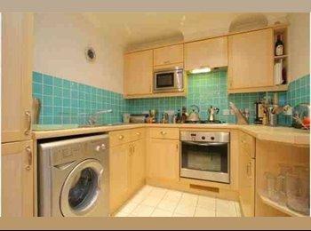 EasyRoommate UK - Double bedroom - Wimbledon, London - £510 pcm
