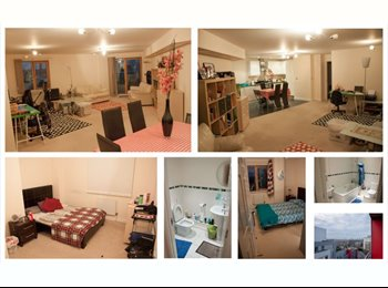 Room to Rent in shared Luxury Flat - East London