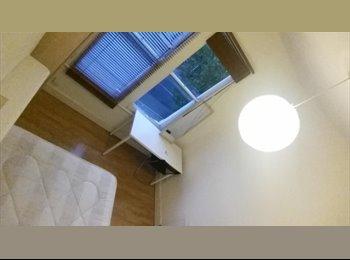 EasyRoommate UK - Single Room - 5 mins walk from Wood Green Tube - Alexandra Palace, London - £450 pcm