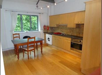 EasyRoommate UK - A well presented two bedroom self contained apartmnent based at the bottom of Hockley - £75-£85pppw - Carlton, Nottingham - £371 pcm