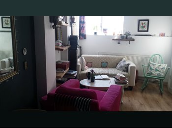EasyRoommate UK - Cozy 1 Bed flat in Hackney ***SHORT LET FEB 28 - MARCH 20 2016 - Hackney, London - £700 pcm