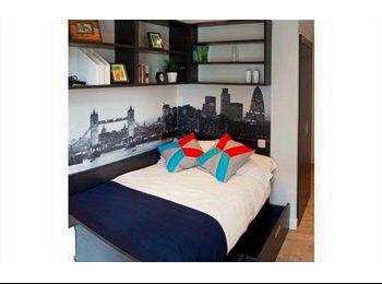 Contemporary En-Suite Room with Stunning View of Big Ben!