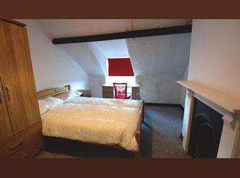 EasyRoommate UK - Large student house on Newport Road - Roath, Cardiff - £330 pcm