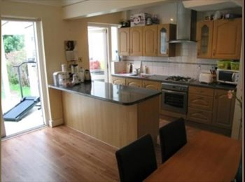 1 room to rent in catford