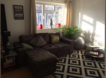 Nice room in a large 2 bed flat Stockwell/Clapham