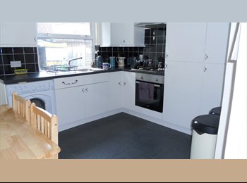 Single room to let in a lovely 2 bed garden flat