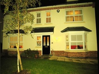 EasyRoommate UK - 1/ 2  Very comfortable & well fitted rooms in beautiful large modern house, Beech Lanes - £500 pcm