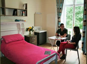 Single Bed in same-gender shared twin room - meals, WiFi &...