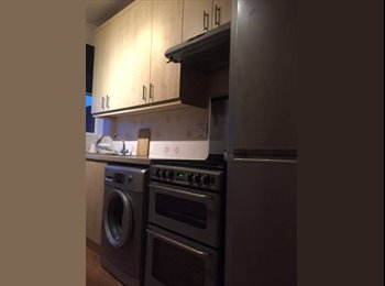 Very friendly/clean/tidy house off Newmarket Rd