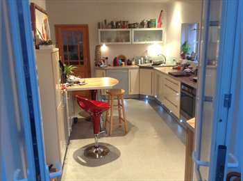 EasyRoommate UK - Double room in  spacious house, Exeter - £400 pcm