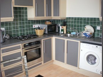 Double bedroom available to rent with a  private bathroom