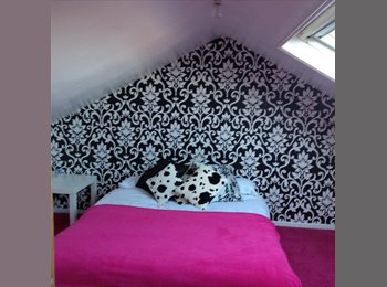 'Funky room offered in very clean stylish house in...