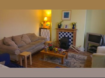 Great Burley houseshare - All bills included