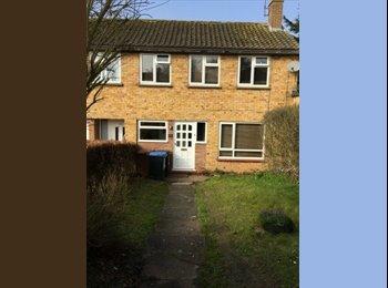 EasyRoommate UK - Terraced House in Hatfield - Hatfield, Hatfield - £416 pcm