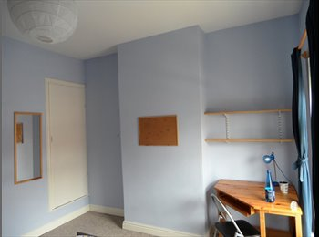 EasyRoommate UK - Student Room  in Clean and Comfy House, Selly Park - £325 pcm